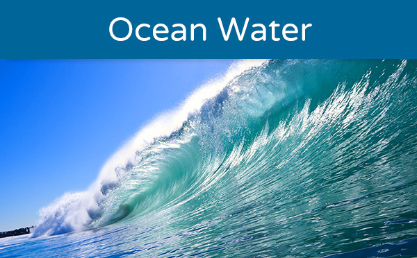 Ocean Water Quality Monitoring Program