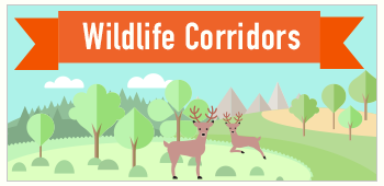 Habitat Connectivity and Wildlife Movement Corridors (Countywide)